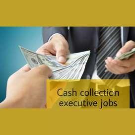 Field collection executive/Cash collection executive