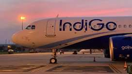 Apply in Indigo for Your Bright Career. Male/ female