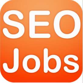 SEO Fresher Required