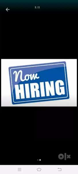 Jobs hiring for fresh candidates can apply