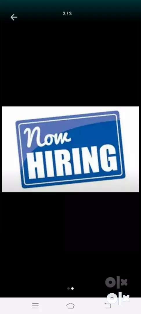 Jobs hiring for fresh candidates can apply 0