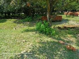 Near by bhudeshwar me plots available hai