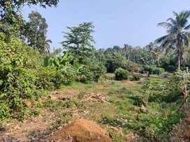 11.5 cents Land/Plot for sale in Chengalam