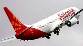 Spice jet Airlines Hiring- Airport Job- Male / Female Fresher to Exper