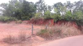 Land for sale near nellyadi 42 cent 650 mtr from highway