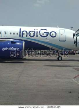 Indigo Airline Ground Staff 8 hour work morning or evening shift