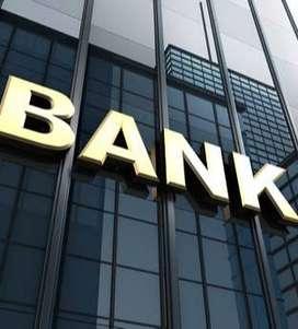 sales officer role in banking sectir kavy urgnet openings