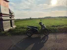 Dijual tanah di desa ngerang juwana