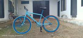 Sepesa Fixie Spesial Edition