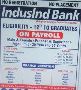 INDUSIND BANK JOB