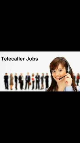Required Female 7telecaller ,5computer Operater,3receptionist