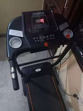 Treadmill 6 month old too low used