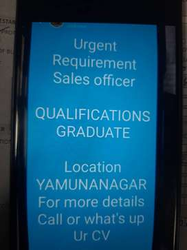 Urgent Requirement Sales officer QUALIFICATIONS GRADUATE  Lo