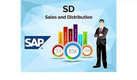 SAP SD S4 HANA SALES Job Oriented Training