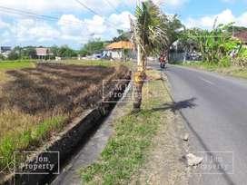 Tanah strategis di pinggir jalan pantai batu mejan, Canggu
