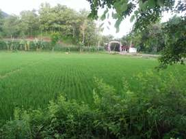 Tanah Pinggir Jalan Raya Nasional III