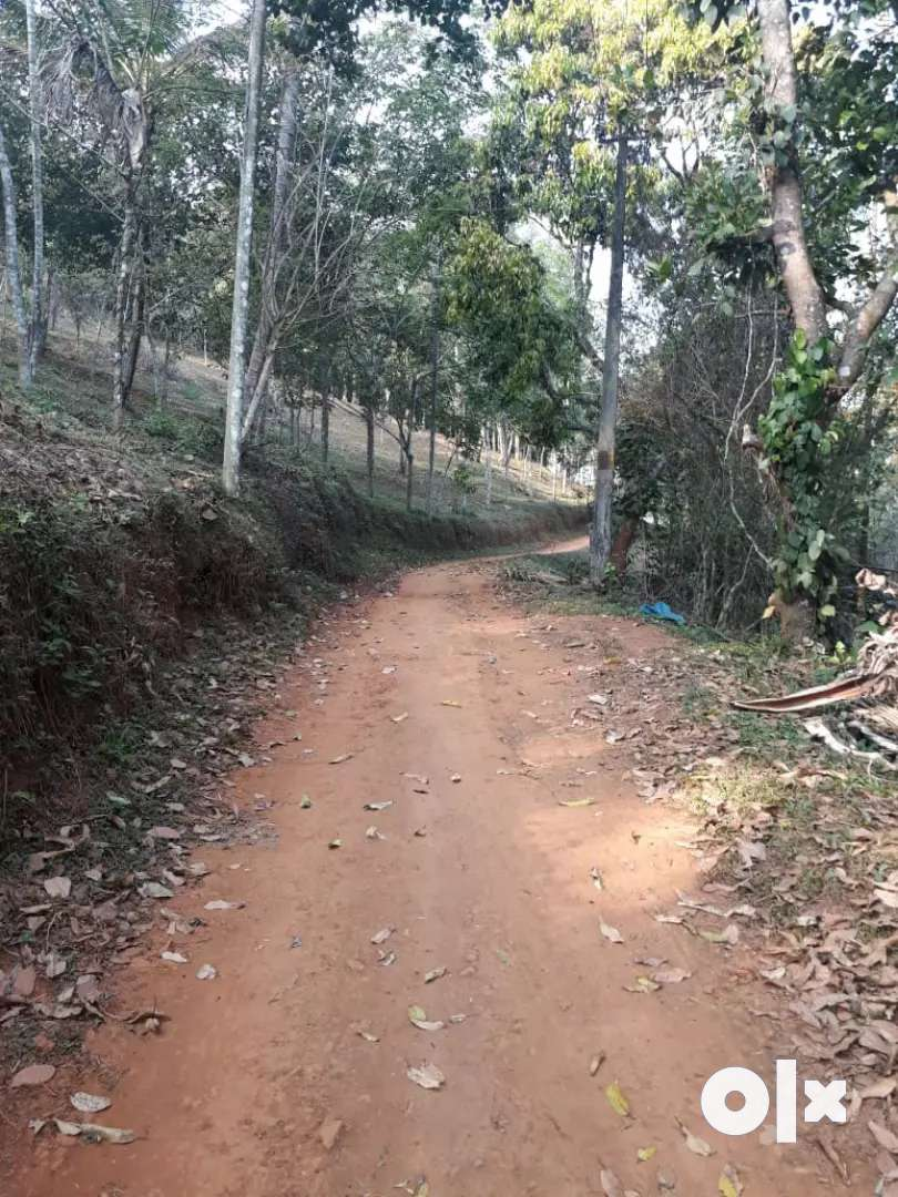 3.5 Acre Land for Farm or Resort in Wayanad. Rs. 15 Lakh/ Acre. 0