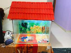 Glass aquarium  with accesoriesv