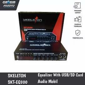 Preamp Parametric Equalizer SKELETON SKT-EQ300