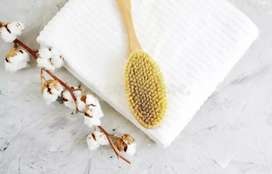 want therapist for Ayurveda spa service