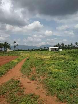 Land sale process