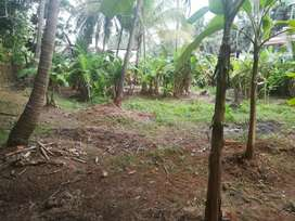 Commercial/residential land  with road frontage for sale at venmanad