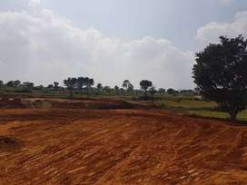 40 ACRES MEGA LAKEVIEW FARMLAND PROJECT NEAR AGALKOTA VILLAGE IN THALL