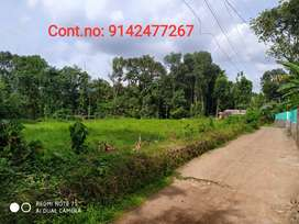 15 cent Housing plot for Sale  in Thengana