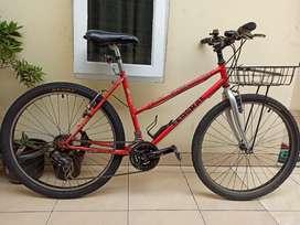 Sepeda Federal commuter bike