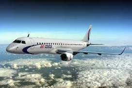 cabin crew / ground handling
