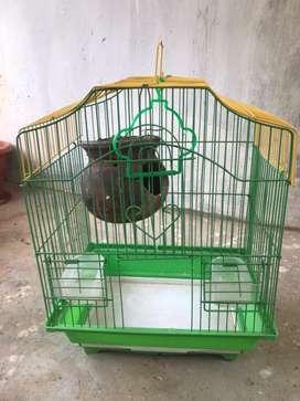 Love birds new cage