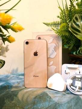 Iphone 8 64gb gold cetar mempesona