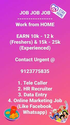 Telecaller/HR Recruiter/Data Entry