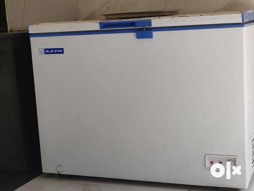Blue star deep freezer 0