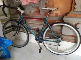 Road Bike Bridgestone