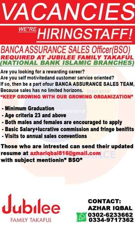 BSO(Banca Sales Officer)
