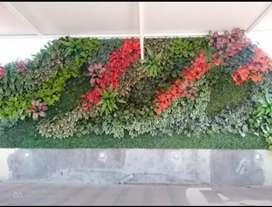 Tukang taman vertikal garden.