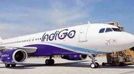 tis jobs from Pan India Airlines hiring superfitious  candidates for v