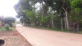 Tanah kebun pinggir jalan raya utama