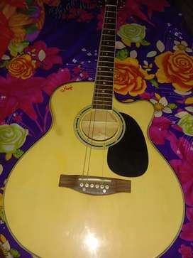 POLO Imported Acoustic Guitar