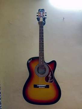 Acoustic guitar just 8 month old