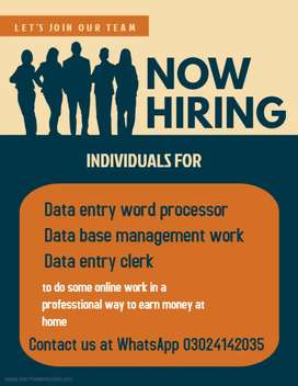 Easily earn daily at home by data typing.
