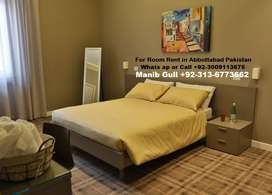 Apartment room for rent in Abbottabad