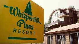 Wishpering pine resort
