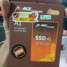 SSD ACE POWER 256GB A1 GARANSI RESMI AGS