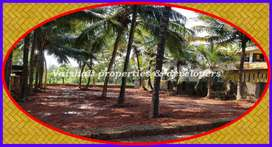 6 cents Residential land in near Eranhipalam