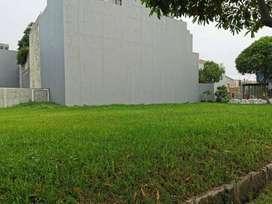 Rudy Cen, Tanah Disewakan Di Daan Mogot Lokasi Ok Jalan Lebar Bebas Ba