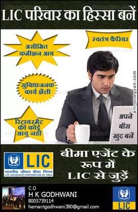 lic direct sales advisor post
