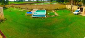 Farm house swimming pool , shendi corporate events , wedding party ,