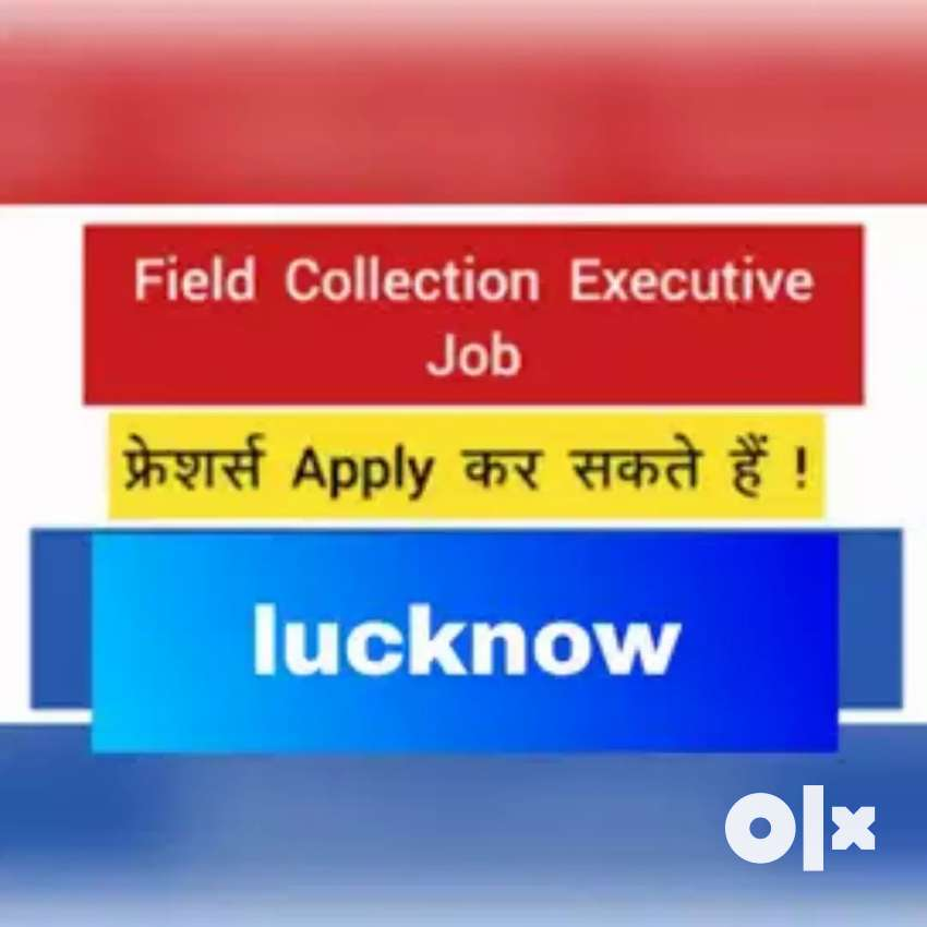 Payment collection/data collection job role vacancies 0